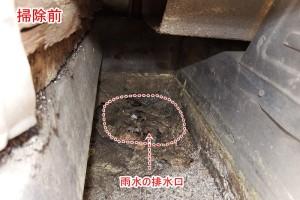内樋の排水口元
