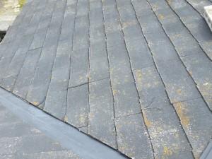 屋根の表面の状態