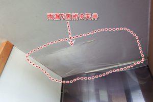 雨漏り 天井 シミ