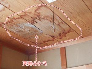 雨漏りが起きた天井のシミ